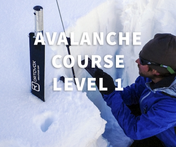 Avalanche Course Level 1